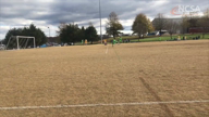 2019 Goalie Highlights