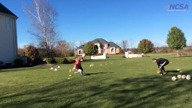 2015 Training in The Ciornei Goalkeeping Academy